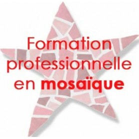 Formation professionnelle en mosaique