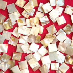 Nacre naturelle forme CARRÉ pour mosaïque vendue par 100 g